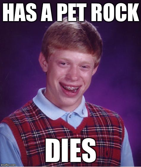 Bad Luck Brian Meme | HAS A PET ROCK DIES | image tagged in memes,bad luck brian | made w/ Imgflip meme maker