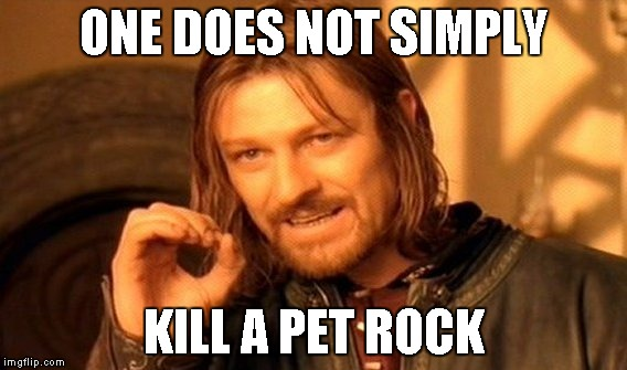 One Does Not Simply Meme | ONE DOES NOT SIMPLY KILL A PET ROCK | image tagged in memes,one does not simply | made w/ Imgflip meme maker