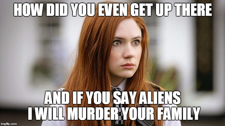HOW DID YOU EVEN GET UP THERE AND IF YOU SAY ALIENS I WILL MURDER YOUR FAMILY | made w/ Imgflip meme maker