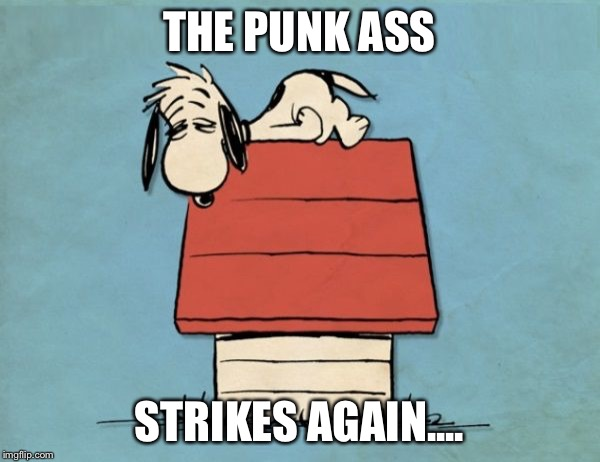Snoopy bushed | THE PUNK ASS STRIKES AGAIN.... | image tagged in snoopy bushed | made w/ Imgflip meme maker