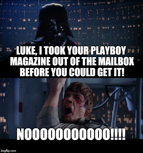 Star Wars No Meme | LUKE, I TOOK YOUR PLAYBOY MAGAZINE OUT OF THE MAILBOX BEFORE YOU COULD GET IT! NOOOOOOOOOOO!!!! | image tagged in memes,star wars no | made w/ Imgflip meme maker