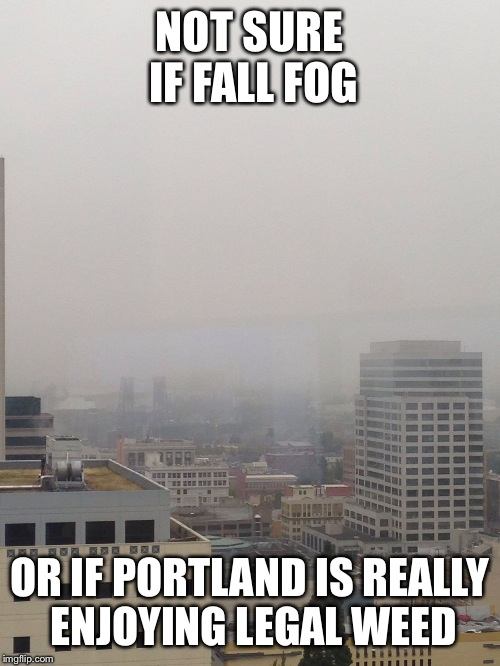NOT SURE IF FALL FOG OR IF PORTLAND IS REALLY ENJOYING LEGAL WEED | image tagged in portland legal weed,AdviceAnimals | made w/ Imgflip meme maker