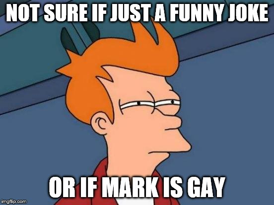 Futurama Fry Meme | NOT SURE IF JUST A FUNNY JOKE OR IF MARK IS GAY | image tagged in memes,futurama fry | made w/ Imgflip meme maker