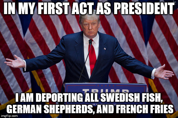 rw9du mr trump, if elected president, what will be your first act