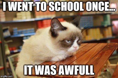 Grumpy Cat Table | I WENT TO SCHOOL ONCE... IT WAS AWFULL | image tagged in memes,grumpy cat table | made w/ Imgflip meme maker