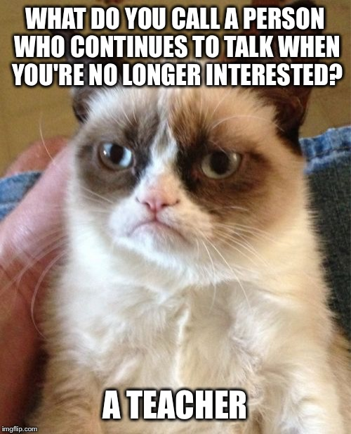 Grumpy Cat Meme | WHAT DO YOU CALL A PERSON WHO CONTINUES TO TALK WHEN YOU'RE NO LONGER INTERESTED? A TEACHER | image tagged in memes,grumpy cat | made w/ Imgflip meme maker