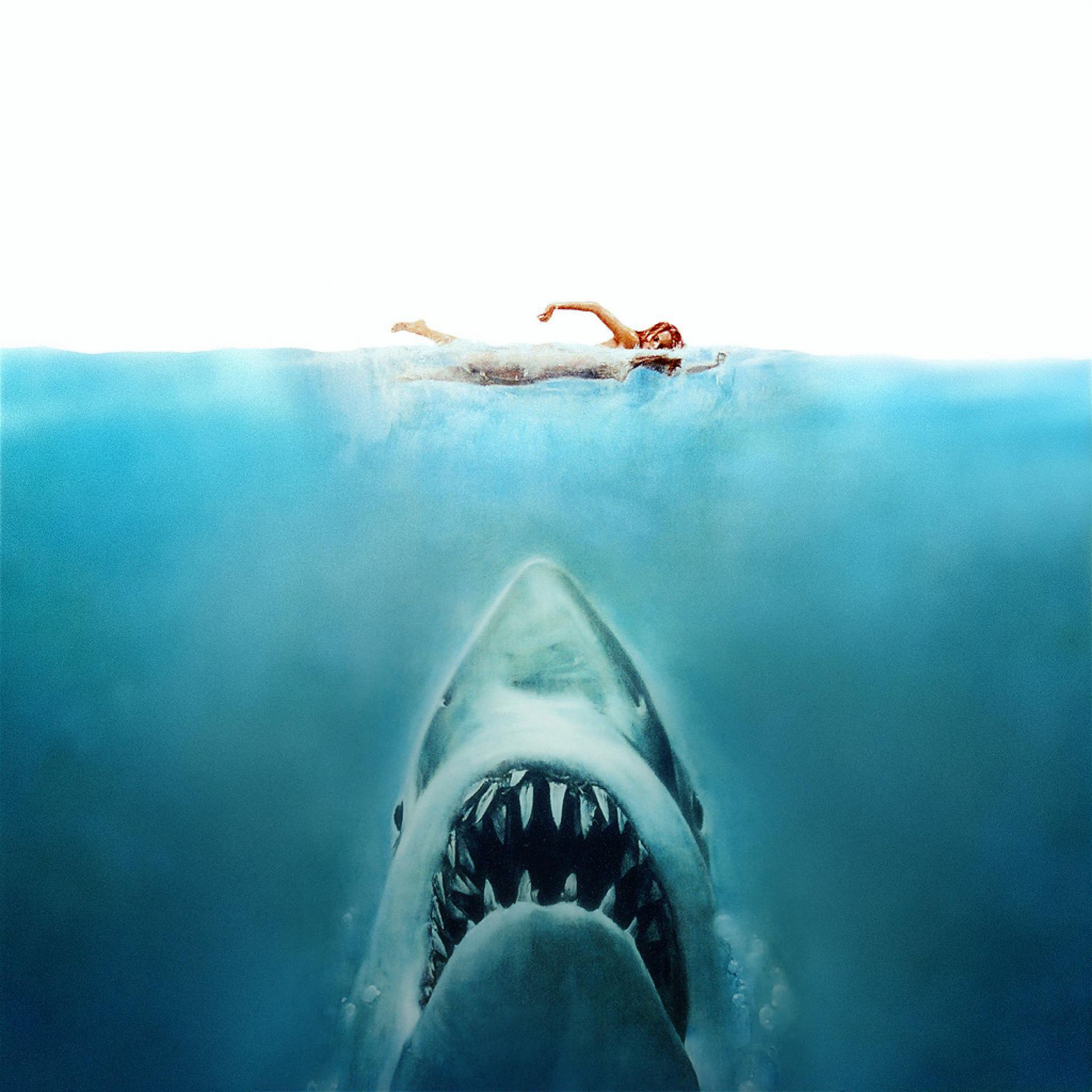 Jaws_Poster Blank Meme Template