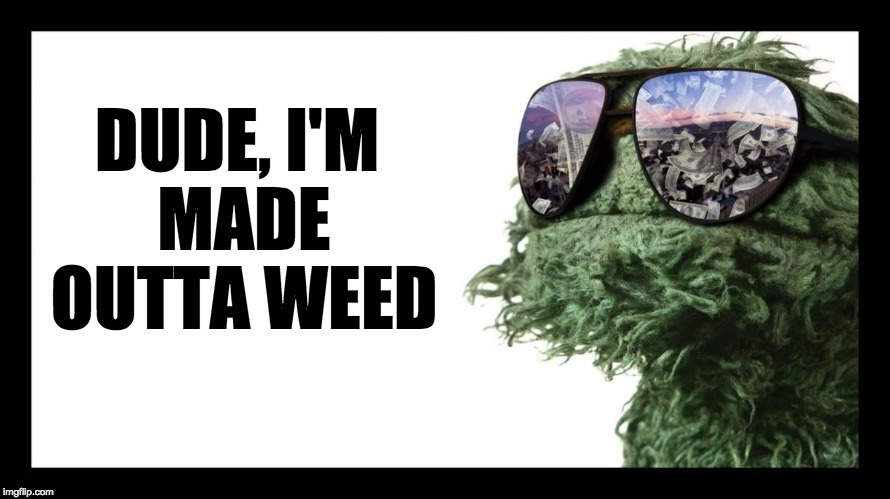 Oscar the Grouch is Made from Weed | DUDE, I'M MADE OUTTA WEED | image tagged in oscar the grouch is made from weed | made w/ Imgflip meme maker