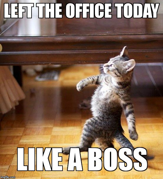 Only because I was the only one there and had to lock up  | LEFT THE OFFICE TODAY  LIKE A BOSS | image tagged in cat walking like a boss | made w/ Imgflip meme maker