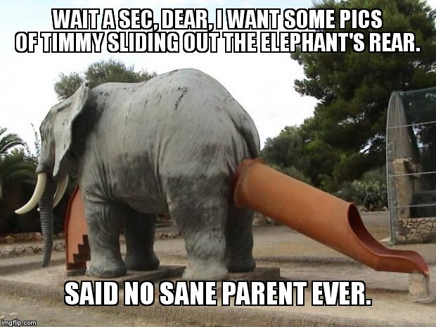 Really, who would design something so badly.  WTF | WAIT A SEC, DEAR, I WANT SOME PICS OF TIMMY SLIDING OUT THE ELEPHANT'S REAR.  SAID NO SANE PARENT EVER. | image tagged in elephant slide | made w/ Imgflip meme maker