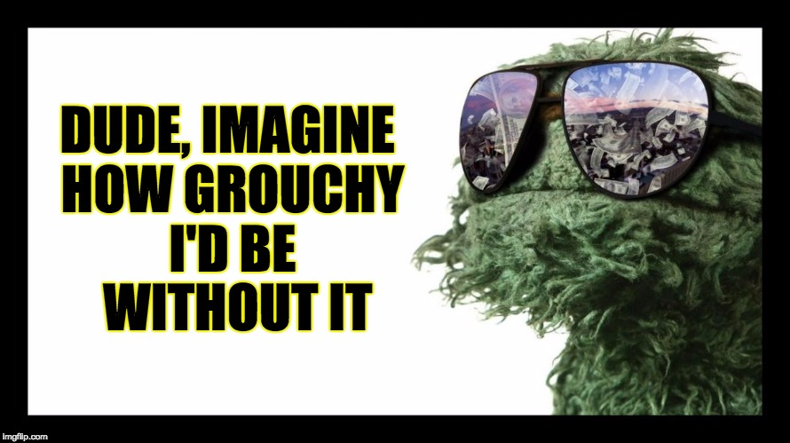 Oscar the Grouch is Made from Weed | DUDE, IMAGINE HOW GROUCHY I'D BE  WITHOUT IT | image tagged in oscar the grouch is made from weed | made w/ Imgflip meme maker
