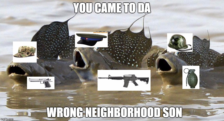 SCREAMING FISH | YOU CAME TO DA WRONG NEIGHBORHOOD SON | image tagged in screaming fish | made w/ Imgflip meme maker