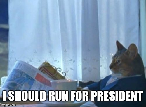 I Should Buy A Boat Cat | I SHOULD RUN FOR PRESIDENT | image tagged in memes,i should buy a boat cat | made w/ Imgflip meme maker