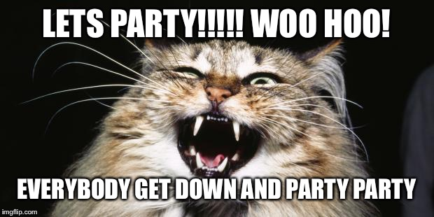 Party time baby!! | LETS PARTY!!!!! WOO HOO! EVERYBODY GET DOWN AND PARTY PARTY | image tagged in party animal,party time,woo hoo,fun fun,party hard | made w/ Imgflip meme maker