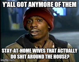 Yall Got Any More Of | Y'ALL GOT ANYMORE OF THEM STAY-AT-HOME WIVES THAT ACTUALLY DO SHIT AROUND THE HOUSE? | image tagged in memes,yall got any more of | made w/ Imgflip meme maker