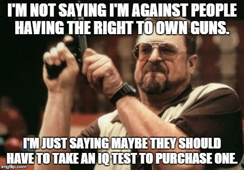 people should have the right to have guns Yet the amendment was easily accepted because of widespread agreement that the federal government should not have the power to infringe the right of the people to keep and bear arms, any more than it should have the power to abridge the freedom of speech or prohibit the free exercise of religion much has changed.