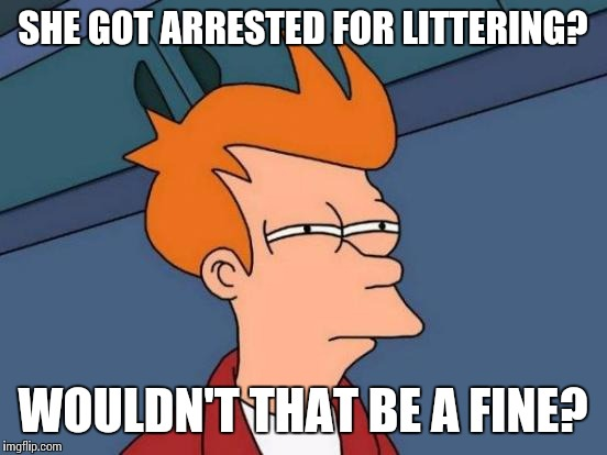 Futurama Fry Meme | SHE GOT ARRESTED FOR LITTERING? WOULDN'T THAT BE A FINE? | image tagged in memes,futurama fry | made w/ Imgflip meme maker