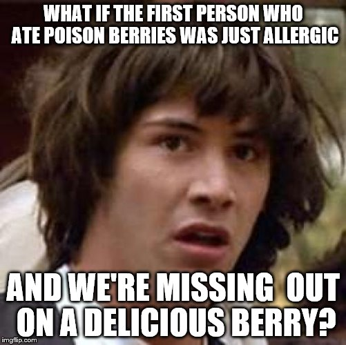 Conspiracy Keanu Meme | WHAT IF THE FIRST PERSON WHO ATE POISON BERRIES WAS JUST ALLERGIC AND WE'RE MISSING  OUT ON A DELICIOUS BERRY? | image tagged in memes,conspiracy keanu | made w/ Imgflip meme maker