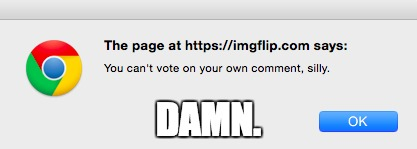 Imgflip.com says... Dammit! | DAMN. | image tagged in lol,funny,memes,damn,imgflip,silly | made w/ Imgflip meme maker
