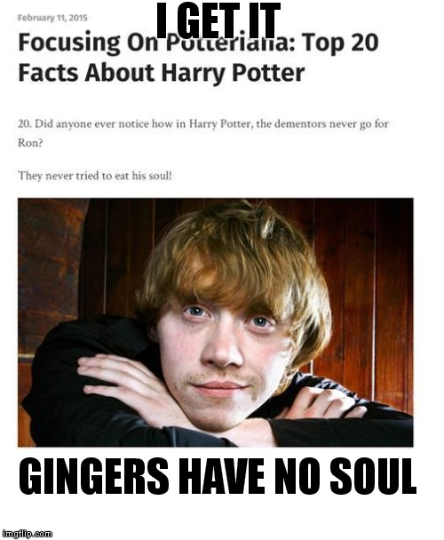 Ginger | I GET IT GINGERS HAVE NO SOUL | image tagged in harry potter | made w/ Imgflip meme maker