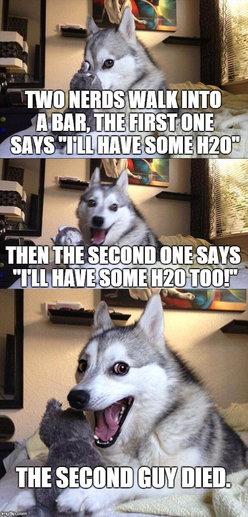 "Bad Pun Dog Meme | TWO NERDS WALK INTO A BAR, THE FIRST ONE SAYS ""I'LL HAVE SOME H2O"" THEN THE SECOND ONE SAYS ""I'LL HAVE SOME H20 TOO!"" THE SECOND GUY DIED. 