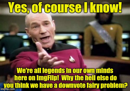 Sounds legit? | Yes, of course I know! We're all legends in our own minds here on ImgFlip!  Why the hell else do you think we have a downvote fairy problem? | image tagged in memes,picard wtf | made w/ Imgflip meme maker