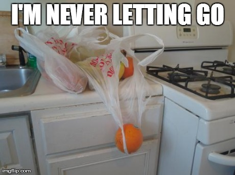 I'M NEVER LETTING GO | image tagged in AdviceAnimals | made w/ Imgflip meme maker