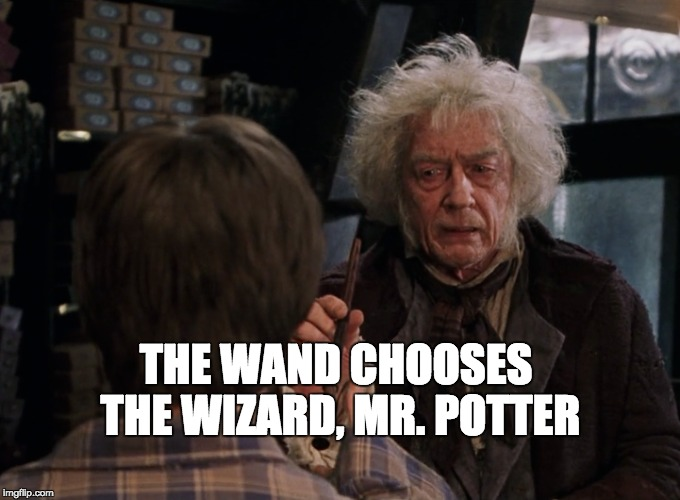 THE WAND CHOOSES THE WIZARD, MR. POTTER | made w/ Imgflip meme maker