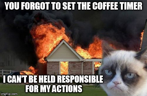 Burn Kitty | YOU FORGOT TO SET THE COFFEE TIMER I CAN'T BE HELD RESPONSIBLE FOR MY ACTIONS | image tagged in memes,burn kitty,coffee | made w/ Imgflip meme maker