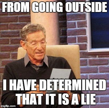 Maury Lie Detector Meme | FROM GOING OUTSIDE I HAVE DETERMINED THAT IT IS A LIE | image tagged in memes,maury lie detector | made w/ Imgflip meme maker