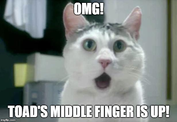 OMG! TOAD'S MIDDLE FINGER IS UP! | made w/ Imgflip meme maker