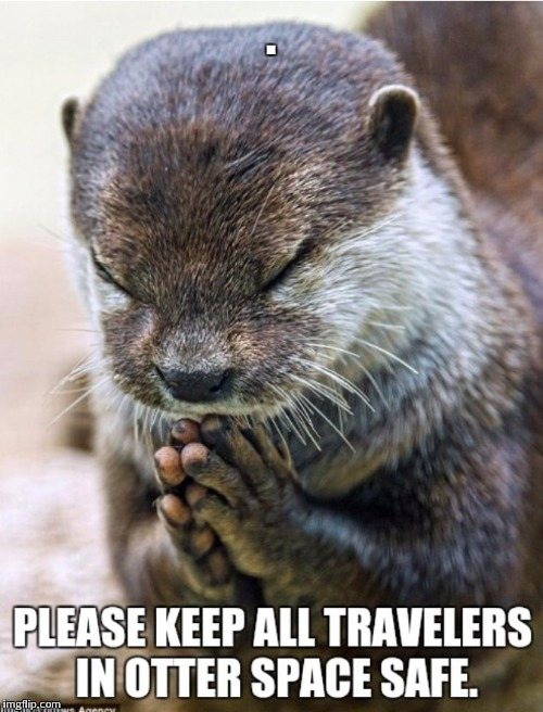 . | image tagged in praying otter | made w/ Imgflip meme maker