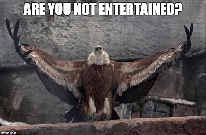 Gladiator: Valcher Edition  | ARE YOU NOT ENTERTAINED? | image tagged in gladiator,funny,original bad luck brian,haha,bird | made w/ Imgflip meme maker