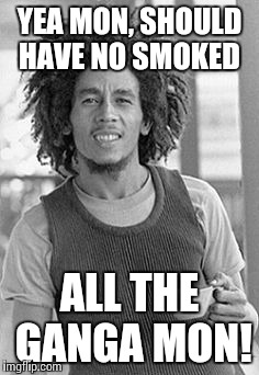 Bob Marley | YEA MON, SHOULD HAVE NO SMOKED ALL THE GANGA MON! | image tagged in bob marley | made w/ Imgflip meme maker