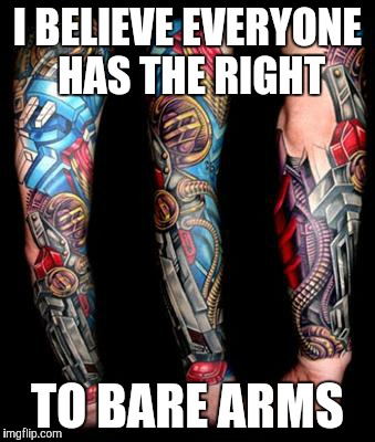 Right to bear arms | I BELIEVE EVERYONE HAS THE RIGHT TO BARE ARMS | image tagged in meme,i see what you did there | made w/ Imgflip meme maker