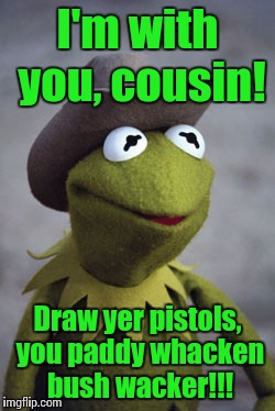 Texas Kermit | I'm with you, cousin! Draw yer pistols, you paddy whacken bush wacker!!! | image tagged in texas kermit | made w/ Imgflip meme maker