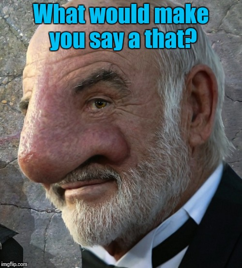 Sean Connery nose close up | What would make you say a that? | image tagged in sean connery nose close up | made w/ Imgflip meme maker