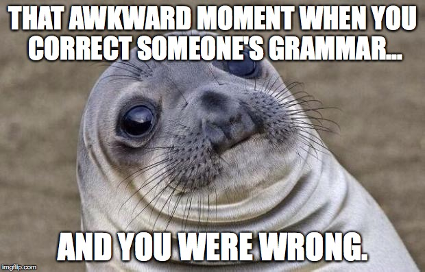 Awkward Moment Sealion Meme | THAT AWKWARD MOMENT WHEN YOU CORRECT SOMEONE'S GRAMMAR... AND YOU WERE WRONG. | image tagged in memes,awkward moment sealion | made w/ Imgflip meme maker