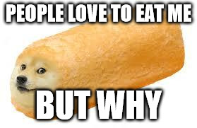 twinkie doge | PEOPLE LOVE TO EAT ME BUT WHY | image tagged in twinkie doge | made w/ Imgflip meme maker