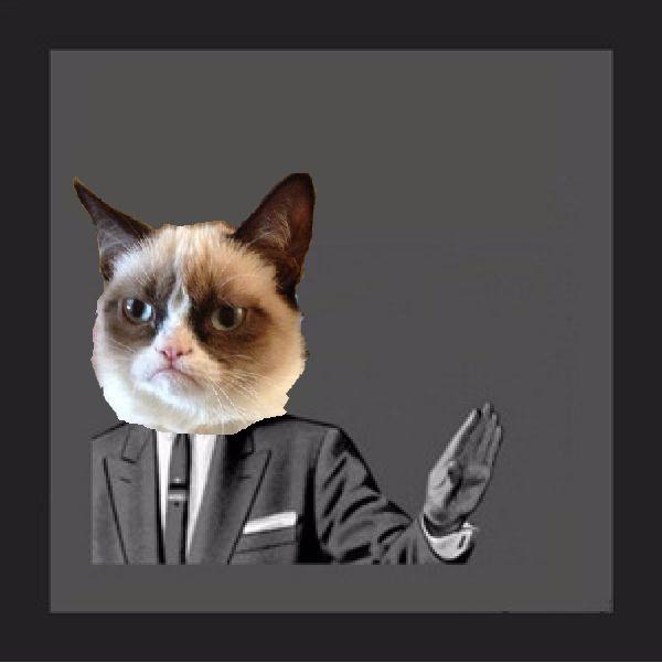 grumpy cat meme generator - 600×601