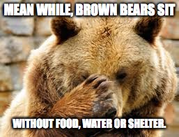 MEAN WHILE, BROWN BEARS SIT WITHOUT FOOD, WATER OR SHELTER. | made w/ Imgflip meme maker