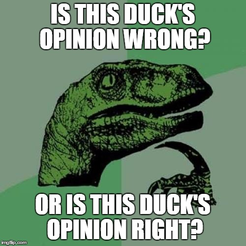 Philosoraptor Meme | IS THIS DUCK'S OPINION WRONG? OR IS THIS DUCK'S OPINION RIGHT? | image tagged in memes,philosoraptor | made w/ Imgflip meme maker