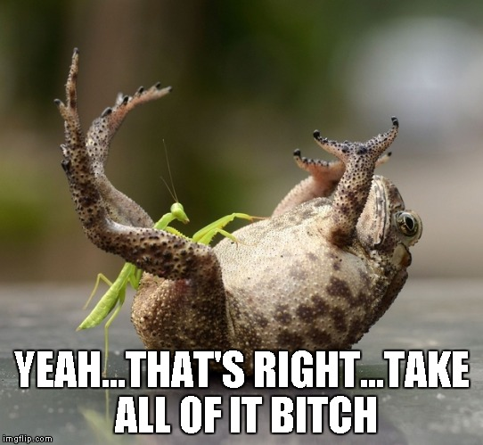 YEAH...THAT'S RIGHT...TAKE ALL OF IT B**CH | image tagged in mantis tickling toad | made w/ Imgflip meme maker