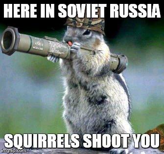 Funny Cat Memes Gifs