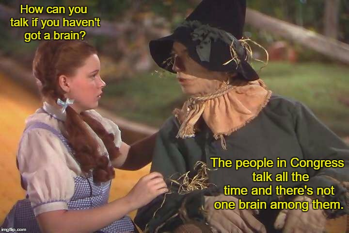 Congress | How can you talk if you haven't got a brain? The people in Congress  talk all the time and there's not one brain among them. | image tagged in congress,dorothy,scarecrow,brains | made w/ Imgflip meme maker