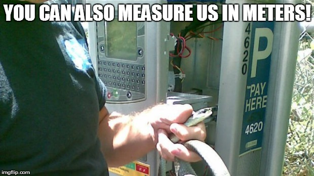 YOU CAN ALSO MEASURE US IN METERS! | made w/ Imgflip meme maker
