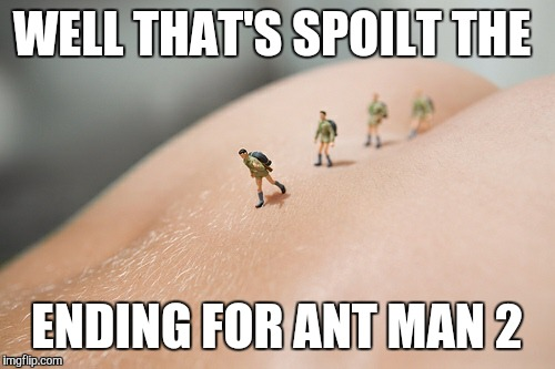 Marvel stop it now | WELL THAT'S SPOILT THE ENDING FOR ANT MAN 2 | image tagged in ant man | made w/ Imgflip meme maker