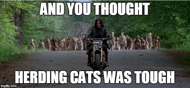 herding cars | AND YOU THOUGHT HERDING CATS WAS TOUGH | image tagged in twd | made w/ Imgflip meme maker