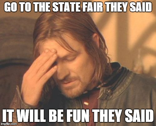 Frustrated Boromir Meme | GO TO THE STATE FAIR THEY SAID IT WILL BE FUN THEY SAID | image tagged in memes,frustrated boromir | made w/ Imgflip meme maker