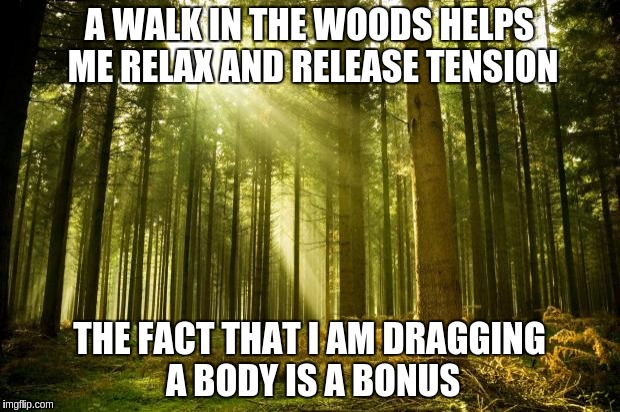 sunlit forest | A WALK IN THE WOODS HELPS ME RELAX AND RELEASE TENSION THE FACT THAT I AM DRAGGING A BODY IS A BONUS | image tagged in sunlit forest | made w/ Imgflip meme maker